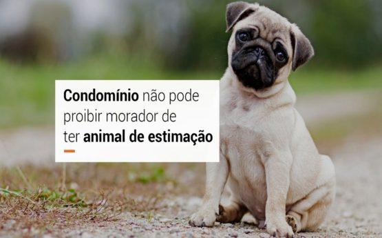 Condomínio não pode proibir morador de ter animal de estimação